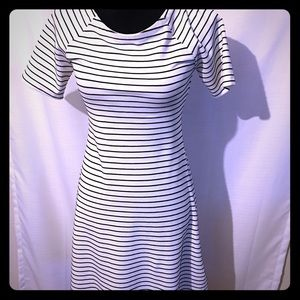 Zara striped skater dress